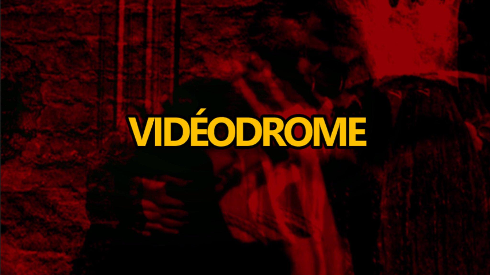 Entretien avec Vidéodrome